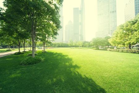 park in  lujiazui financial centre, Shanghai, China photo