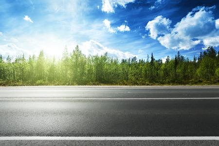 アスファルトの道路と森林