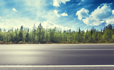 asphalt road and forest