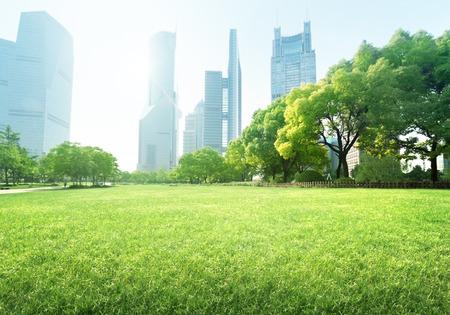 Parc dans le centre financier de Lujiazui, Shanghai, Chine Banque d'images - 33421461