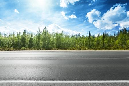 Asphaltstraße und Wald