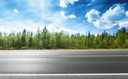пейзаж: Асфальтированная дорога и лес Фото со стока