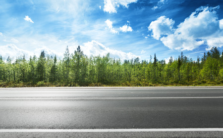 estrada de asfalto e da floresta