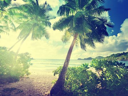 indian ocean: sunset on the beach Takamaka, Mahe island, Seychelles