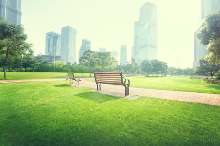 urban jungle: bench in park, Shanghai, China