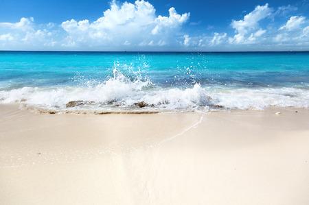 해변 카리브 바다의 모래