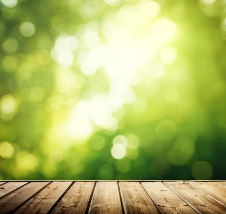 sunny day: superficie de madera en el bosque Foto de archivo