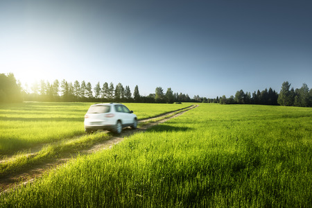 spring field and blurred car on ground road photo