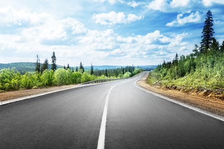 ensolarado: estrada na floresta da montanha