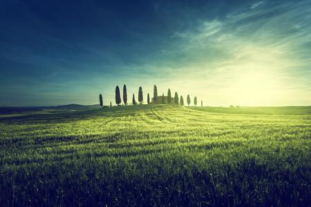 agricultura: Vistas clásicas de la Toscana en primavera la puesta de sol, Pienza, Italia
