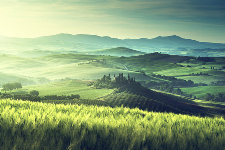 Vroege lente ochtend in Toscane, Italië Stockfoto - 42409971
