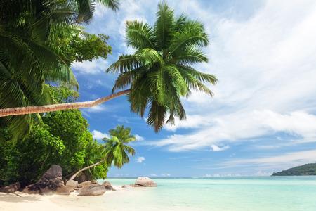 white sand: beach on Mahe island, Seychelles