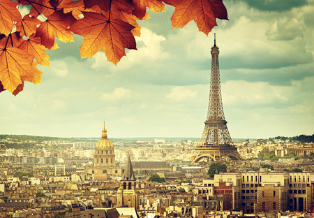 autumn leaves in Paris and Eiffel tower 免版税图像 - 42735589