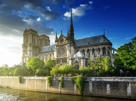 paris france: Notre Dame de Paris, France