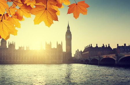 autumn sky: autumn leaves and Westminster, London, UK
