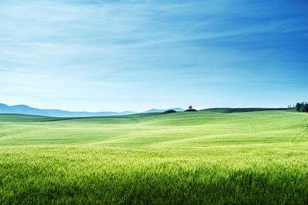 青空: 晴れた日トスカーナ、イタリアの丘