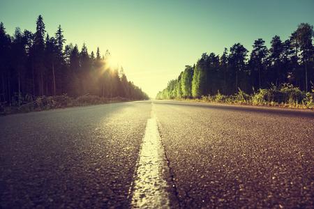 road in summer forest Standard-Bild