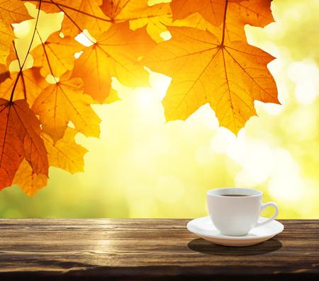 ensolarado: xícara de folhas de café e do outono