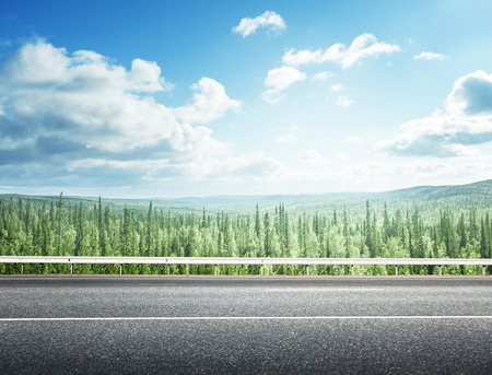 country landscape: road in summer forest Stock Photo