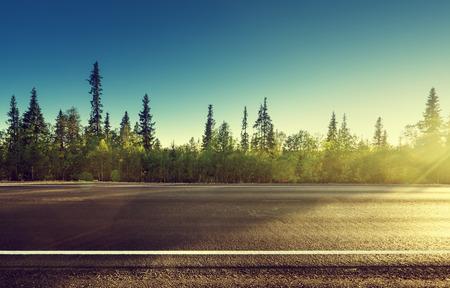 asfalt weg in het bos