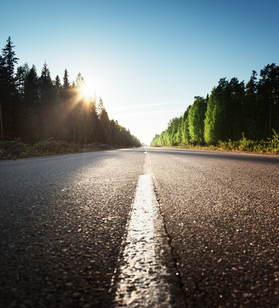 road in summer forest Stock Photo
