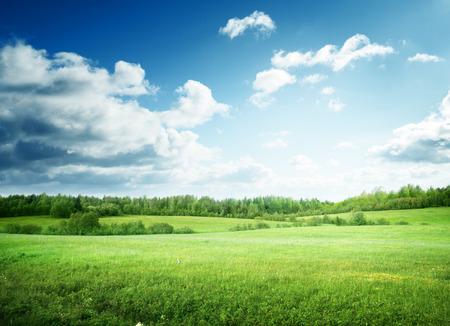 Campo de césped y cielo perfecto Foto de archivo - 44840240