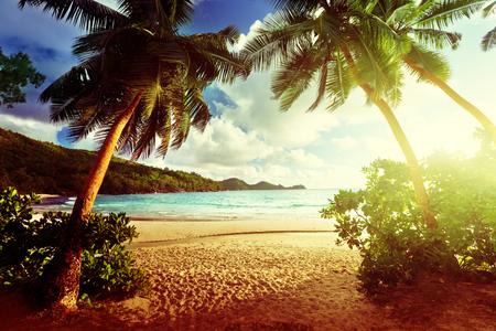 paradise beach: sunset on the beach Takamaka, Mahe island, Seychelles