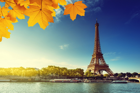 paris france: Seine in Paris with Eiffel tower in autumn season