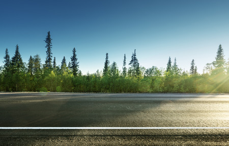 grass country: asphalt road in forest