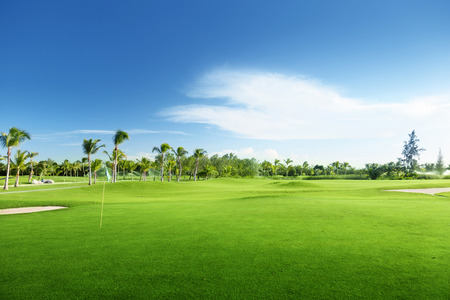 golf field: golf course