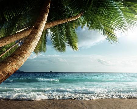 seychelles: sunset on Seychelles beach