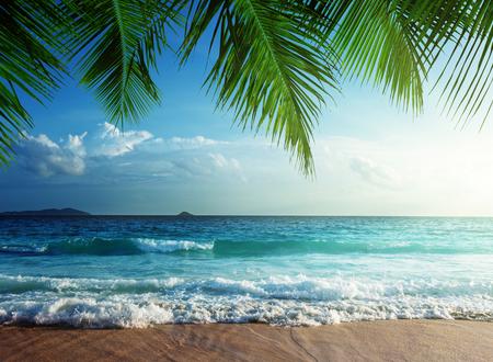 Zonsondergang op het strand Seychellen Stockfoto - 48669548