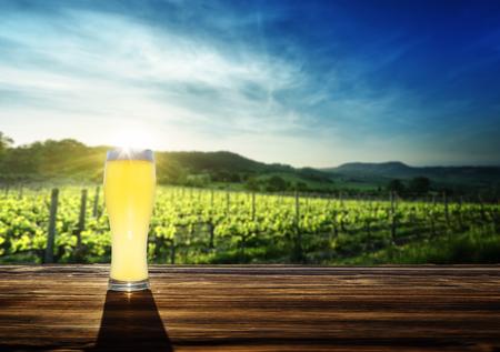 Bier und Weinberg in Sonnenuntergang