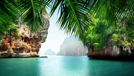 mer tropicale et rochers