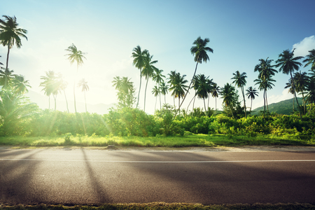 speedway park: empty road in jungle of Seychelles islands Stock Photo