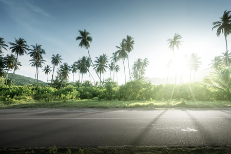 empty road in jungle of Seychelles islands Stock Photo