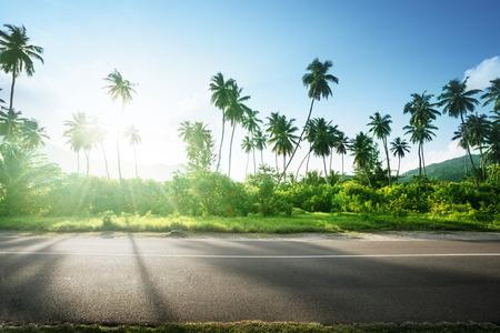 side road: empty road in jungle of Seychelles islands Stock Photo