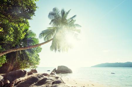 seychelles: early morning, Seychelles beach
