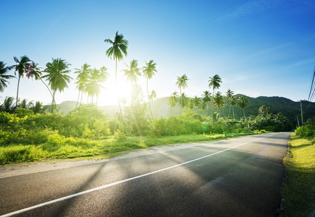 road: empty road in jungle of Seychelles islands Stock Photo