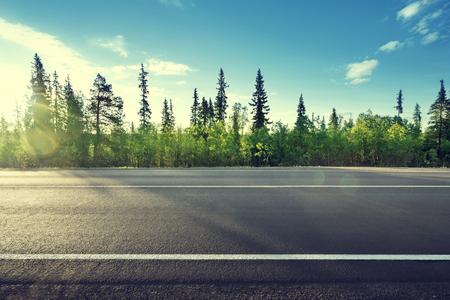 asphalt: asphalt road in forest