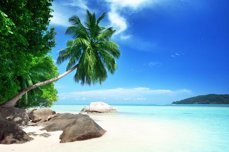 세이셸 마헤 섬 해변