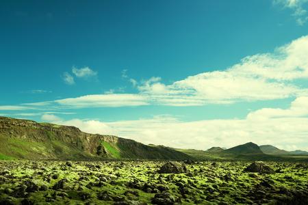 mossy: volcanic mossy landscape, Iceland