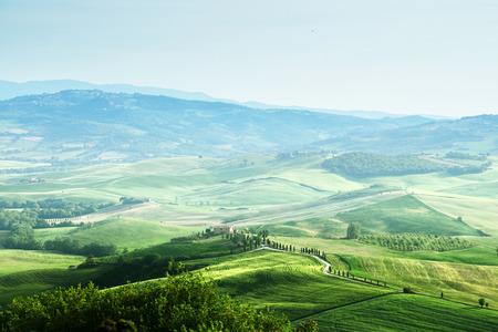 agriturismo: tuscany sprig landscape,  Italy