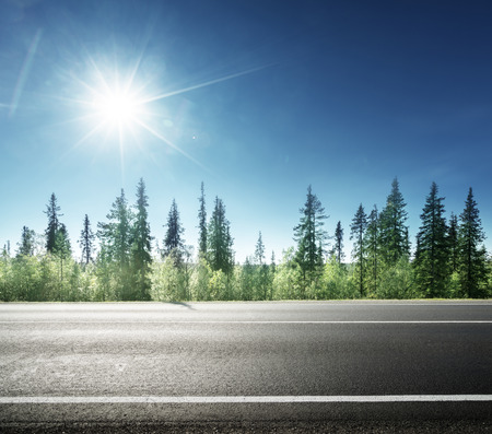 森のアスファルト道路