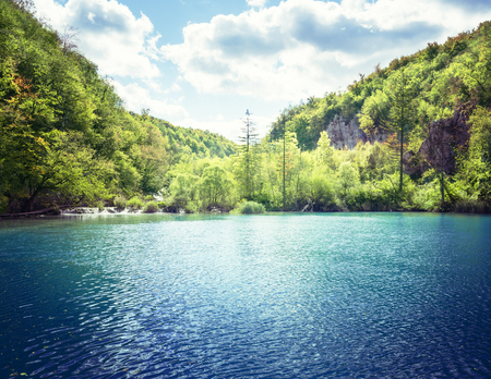 lake in forest of Croatia 版權商用圖片