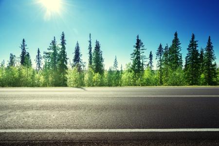 포리스트의 아스팔트 도로