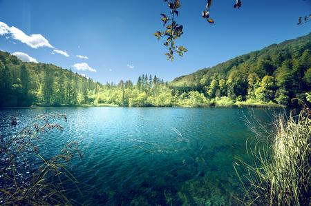 크로아티아의 숲에있는 아름다운 호수