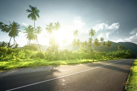 Lege weg in de jungle van de Seychellen Stockfoto - 91806232