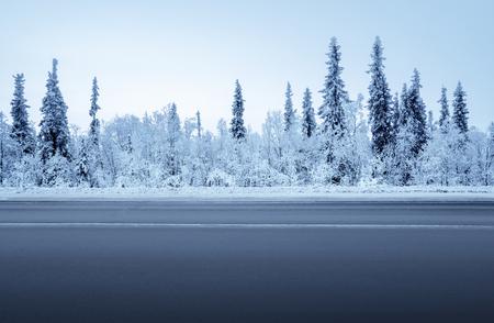 weg in de winter bos
