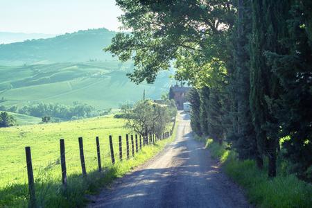 country road, tuscany, Italy Stock Photo
